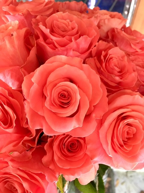 Our favorite roses for weddings (Part 1)